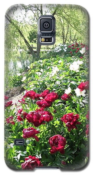 Willow Lake Peonies  Galaxy S5 Case