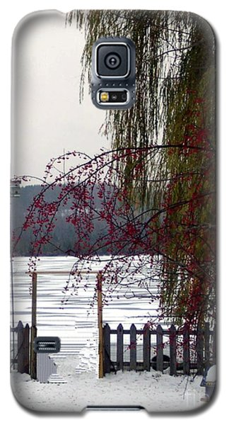Willows And Berries In Winter Galaxy S5 Case by Desiree Paquette