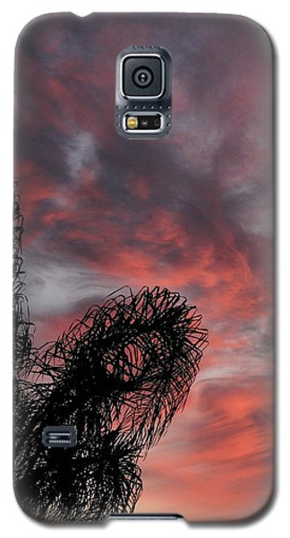 Windswept Clouds Galaxy S5 Case