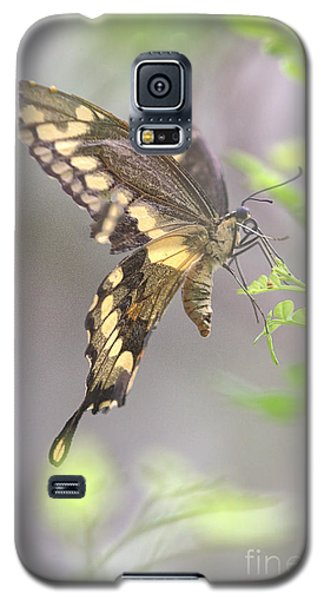 Galaxy S5 Case featuring the photograph Winged Ballet by Anne Rodkin