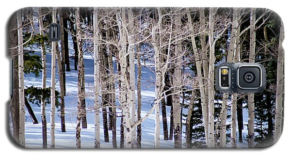 Galaxy S5 Case featuring the photograph Winter Aspens by Colleen Coccia