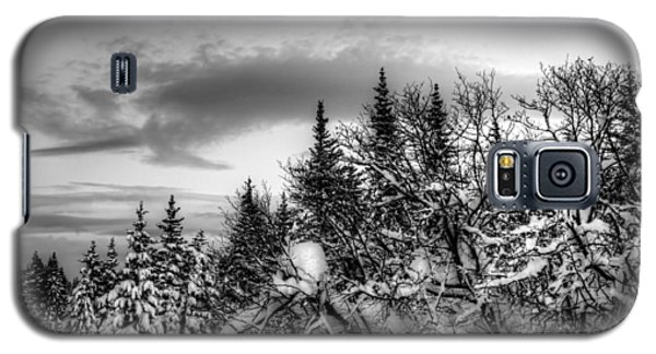 Galaxy S5 Case featuring the photograph Winter Evening by Michele Cornelius