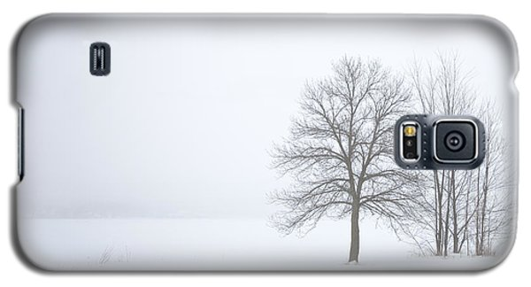 Winter Fog And Trees Galaxy S5 Case