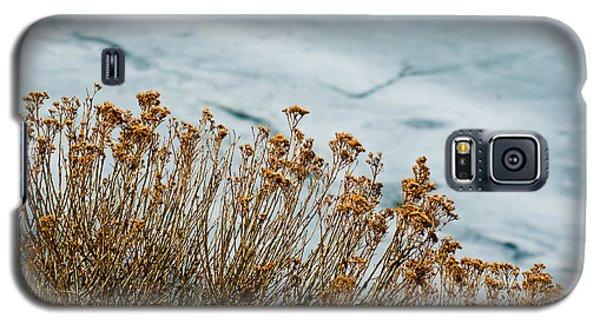 Winter Life Galaxy S5 Case
