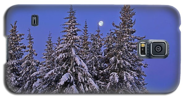 Galaxy S5 Case featuring the photograph Winter Night by Michele Cornelius