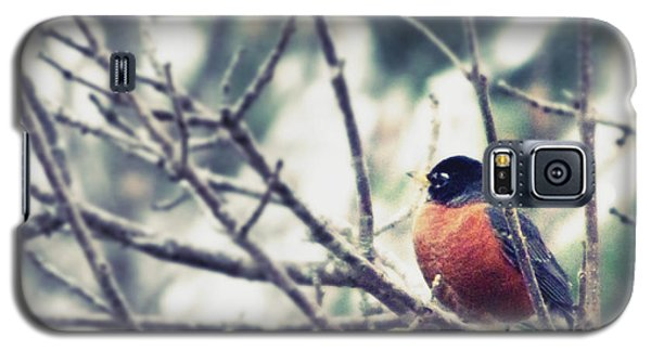 Galaxy S5 Case featuring the photograph Winter Robin by Robin Dickinson