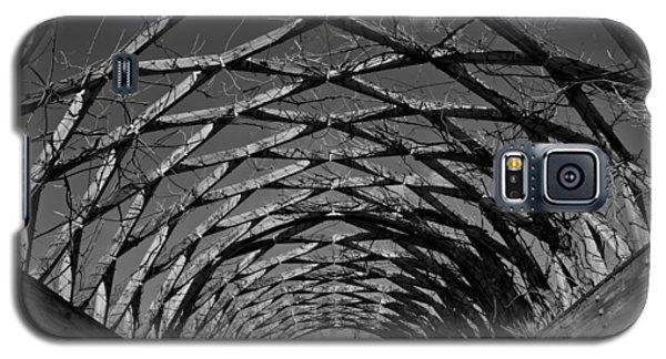 Winter Trellis Galaxy S5 Case