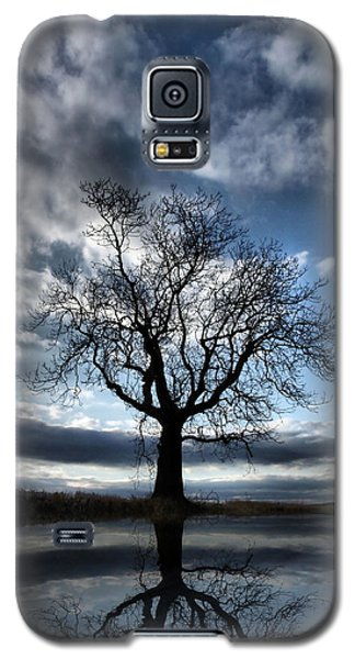 Wintering Oak Tree Galaxy S5 Case