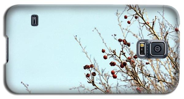 Winter's End Galaxy S5 Case