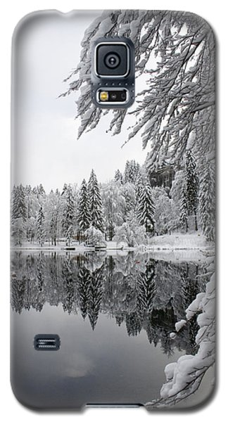 Wintery Reflections Galaxy S5 Case by Ian Middleton