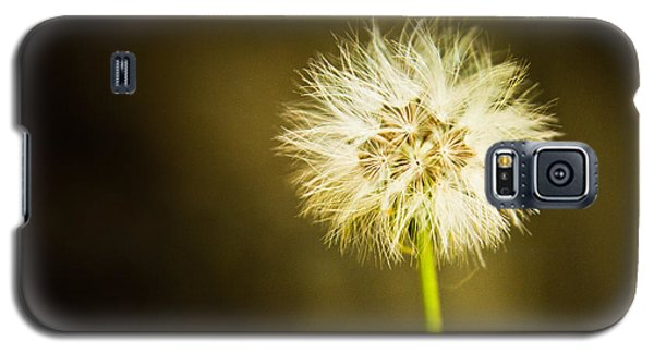 Galaxy S5 Case featuring the photograph Wishes by Sara Frank