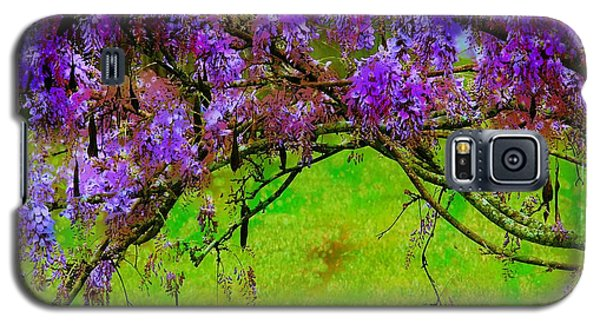 Wisteria Bower Galaxy S5 Case by Judi Bagwell