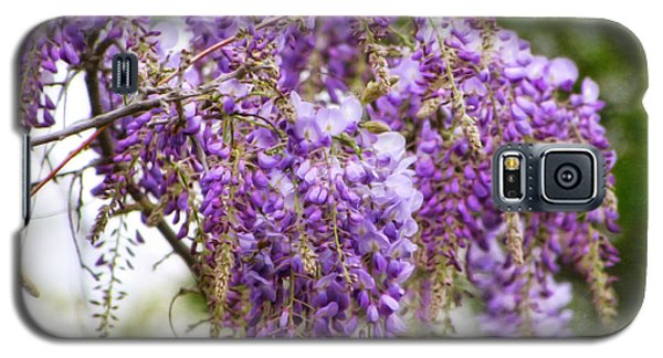 Galaxy S5 Case featuring the photograph Wisteria by Joan Bertucci