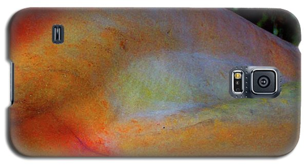 Galaxy S5 Case featuring the digital art Wonder by Richard Laeton