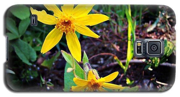 Woods Flower Galaxy S5 Case