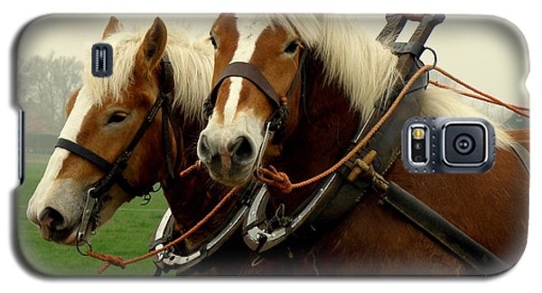 Galaxy S5 Case featuring the photograph Work Horses by Lainie Wrightson