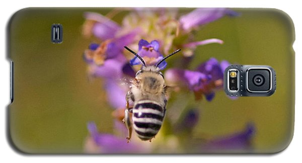 Galaxy S5 Case featuring the photograph Worker Bee by Mitch Shindelbower