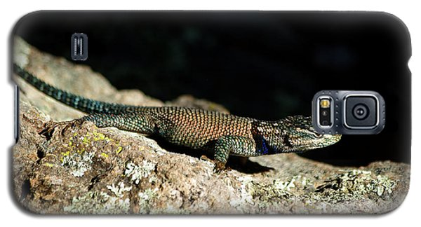 Galaxy S5 Case featuring the photograph Yarrow's  by Vicki Pelham