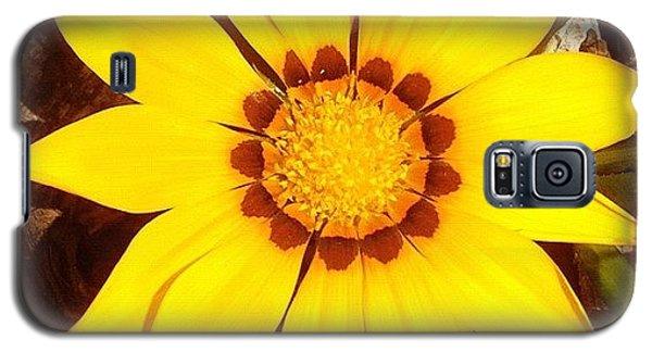 Yellow Galaxy S5 Case by Cameron Bentley
