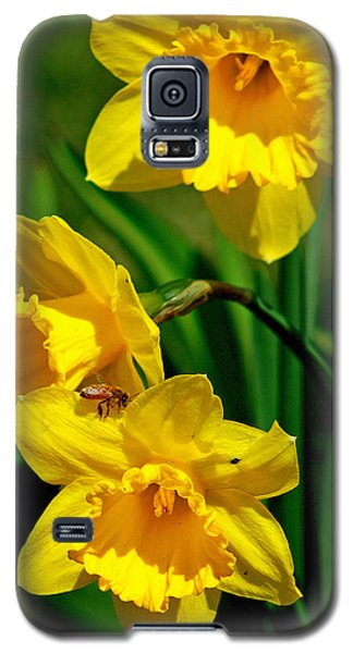Galaxy S5 Case featuring the photograph Yellow Daffodils And Honeybee by Kay Novy