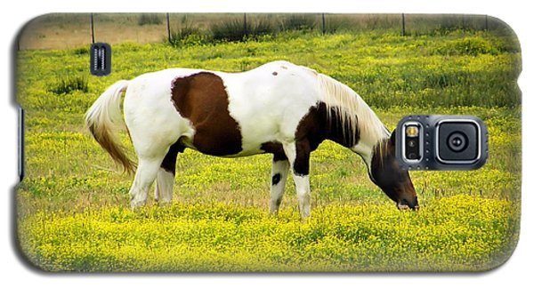 Galaxy S5 Case featuring the photograph Yellow Fields Horse by Wendy McKennon