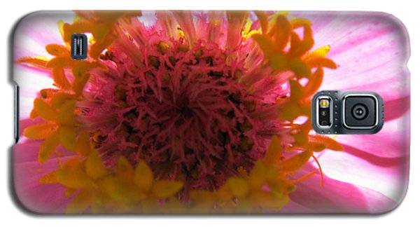 Galaxy S5 Case featuring the photograph Yellow Flowerettes Around by Tina M Wenger