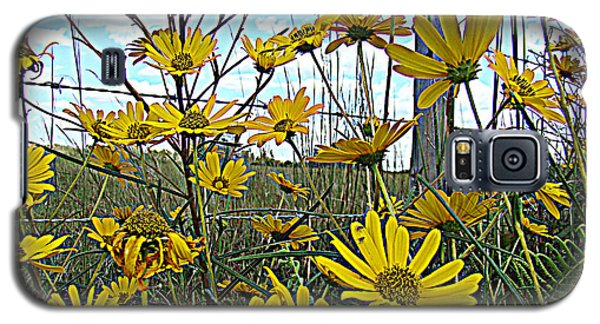 Galaxy S5 Case featuring the photograph Yellow Flowers By The Roadside by Alice Gipson