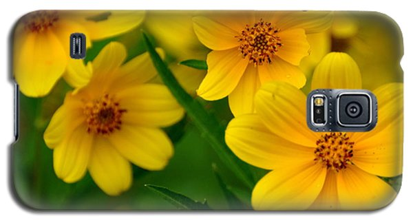 Galaxy S5 Case featuring the photograph Yellow Flowers by Marty Koch