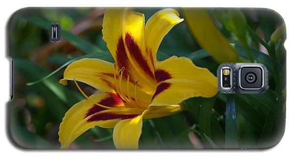 Galaxy S5 Case featuring the photograph Yellow Lily by Tannis  Baldwin