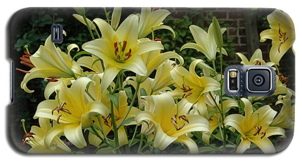 Galaxy S5 Case featuring the photograph Yellow Oriental Stargazer Lilies by Tom Wurl
