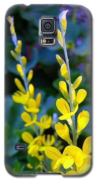 Yellow Plumes Galaxy S5 Case by Judi Bagwell