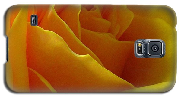 Galaxy S5 Case featuring the photograph Yellow Rose Of Texas by Sandra Phryce-Jones
