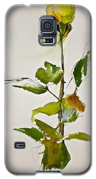 Yellow Rose-posthumously Presented Paintings Of Sachi Spohn  Galaxy S5 Case