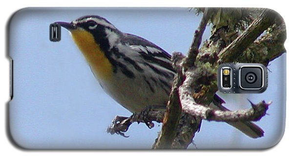 Galaxy S5 Case featuring the photograph Yellow-throated Warbler by Roena King