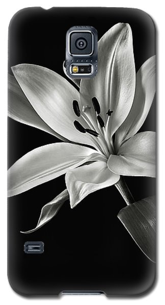 Galaxy S5 Case featuring the photograph Yellow Tiger Lily In Black And White by Endre Balogh