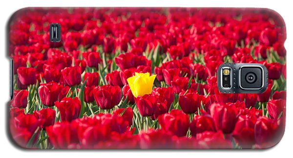 Galaxy S5 Case featuring the photograph Yellow Tulip by Hans Engbers