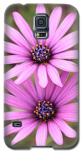 Galaxy S5 Case featuring the photograph You And Me  by Amy Gallagher