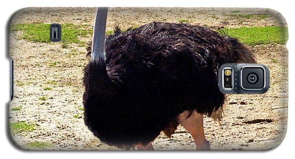 You Look At Me I Look At You Galaxy S5 Case