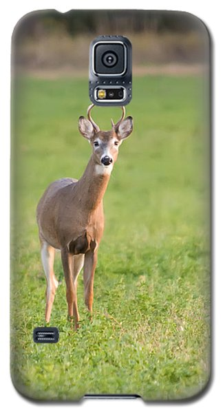 Galaxy S5 Case featuring the photograph Young Buck by Art Whitton