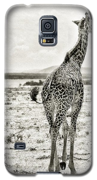 Young Giraffe Strolling Around Galaxy S5 Case