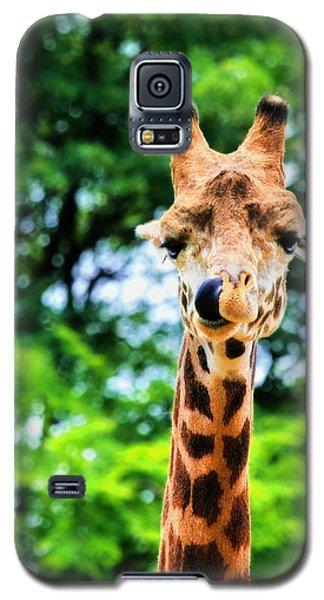 Yum Sllllllurrrp Galaxy S5 Case