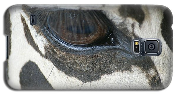Galaxy S5 Case featuring the photograph Zebra by Heidi Poulin