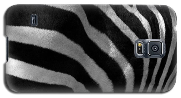 Galaxy S5 Case featuring the photograph Zebra Stripes by Cindy Haggerty