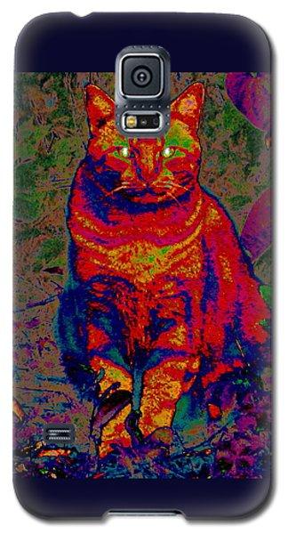 Zombie Cat Galaxy S5 Case