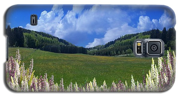Galaxy S5 Case featuring the photograph  A Beautiful View by Bernd Hau