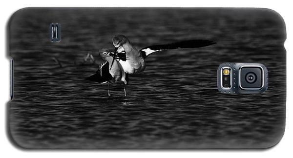 American Avocet Dance  Galaxy S5 Case