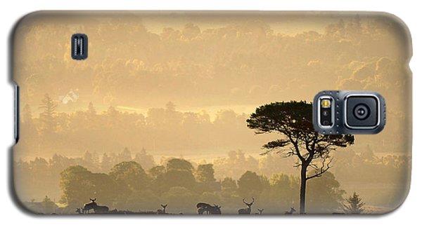 Autumn Morning, Strathglass Galaxy S5 Case