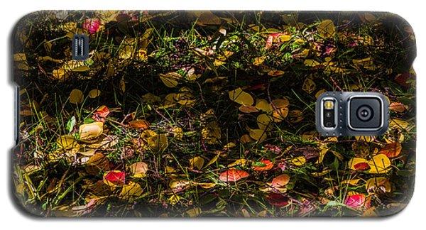 Autumn's Mosaic Galaxy S5 Case by Alana Thrower