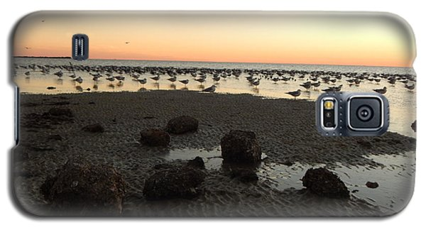 Beach Rocks Barnacles And Birds Galaxy S5 Case by Expressionistart studio Priscilla Batzell