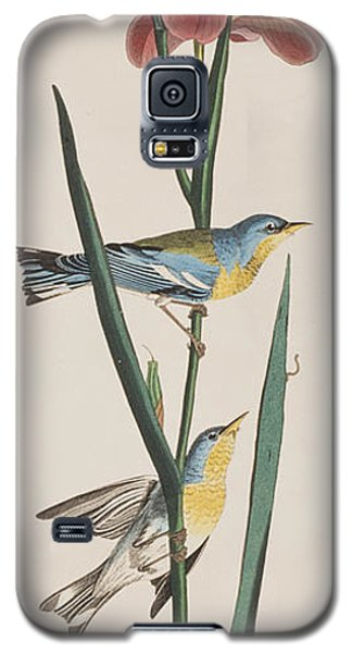 Blue Yellow-backed Warbler Galaxy S5 Case